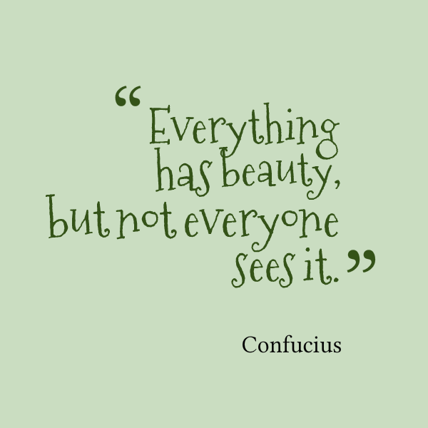 23442-everything-has-beauty-but-not-everyone-sees-it